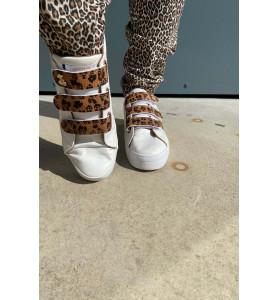 basket leopard scratch